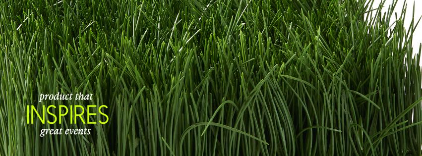 Jamali Floral & Garden-8