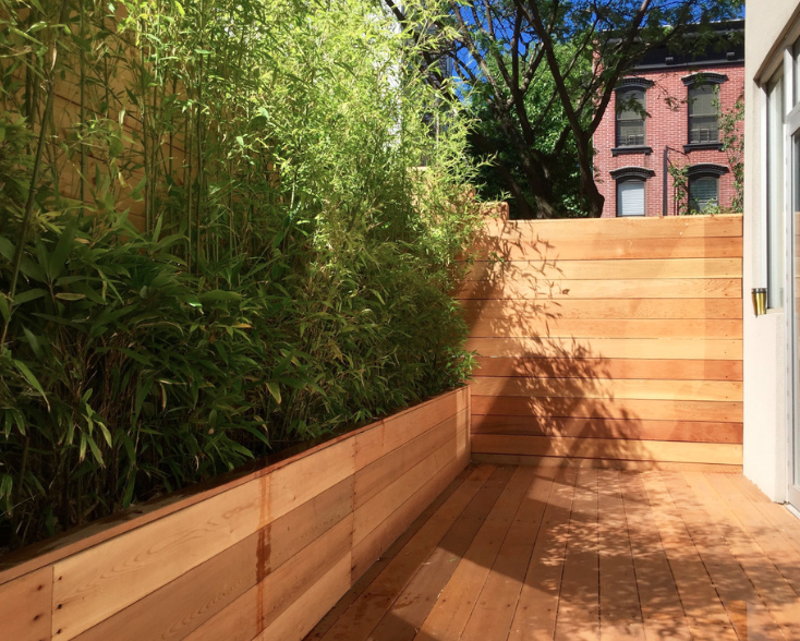 Staghorn NYC Landscape Design-17