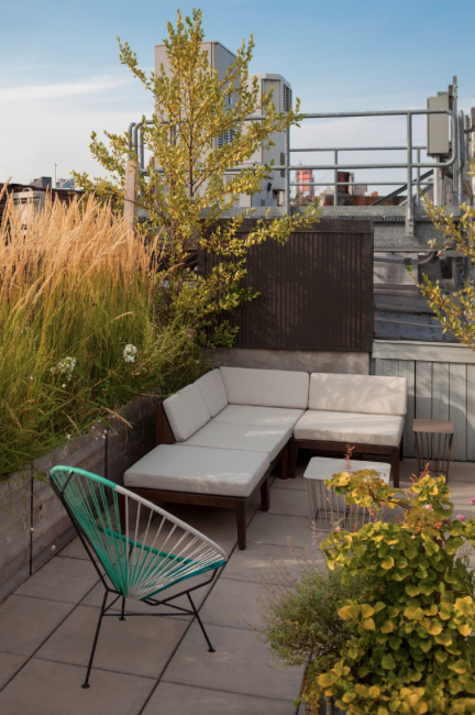 Staghorn NYC Landscape Design-14