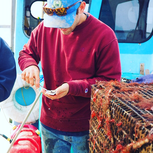 Eastern Bays Oyster Company-6